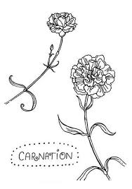 C Is For Carnation Flower Colouring Page