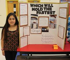Blue Ridge Holds First Science Fair