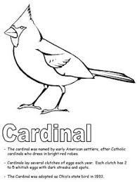 Bird Cardinal Coloring Pages