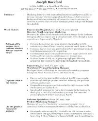 Brand Manager Resume Examples Revenue Best Example Objective