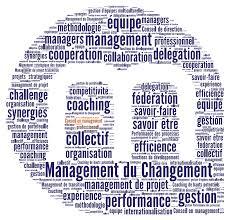 cabinet de conseil conduite du changement management conduite du changement a marketing