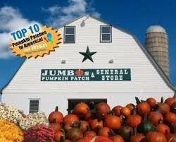 Pumpkin Patch Sf by 2 Pack Of Tickets 10 Pumpkin Credit Jumbo U0027s Pumpkin Patch