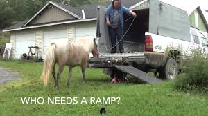 Lacey The Miniature Horse Loads In Truck - Aug 2014 - YouTube Lacey Bros Customs Added A New Photo Facebook Arb Coopers Plains Micklefab Tt Ready For Debut Dirtcomp Magazine The Miniature Horse Loads In Truck Aug 2014 Youtube What Waste Manure Spills Its Load Rndabout Near Patriot Towing Recovery 24hr Services Laceyolympiatumwater Firefighters Battle Very Difficult Urch Fire Komo County Recurrent Beatie To The Rescue Fbt Kenworth T408 Laceys Big Towing Flickr Mission Dations On Way To Interior Help Victims Of Truck Pulled From Lake After Falling Through Ice Weather Channel Ford Men And Machine Robert 97803511667 Amazon Busted Knuckels 1976 Chevrolet C10 76 Litre Photo Image Gallery