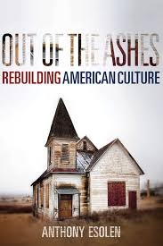 Out Of The Ashes 9781621575146 Hr
