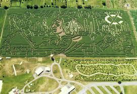 Pumpkin Patches Around Manhattan Ks by The World U0027s Largest Corn Maze Richardson Farm Experience In