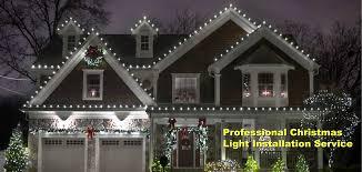 Ticks On Christmas Trees 2015 by Alternative Earthcare Long Island Tree U0026 Lawn Service