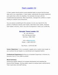 Sample Resume Format For Experienced Bpo Professionals Best Samples Software Pdf