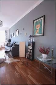 wohnzimmer bunt streichen caseconrad