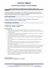 Lead Business Analyst Project Manager Resume Format