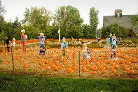 Pumpkin Patch Ogden Utah by Fall Is In The Air Next Stop Adventure