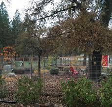 News from Oak Creek Ranch 11 1 15 12 1 15
