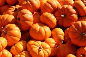 Grims Pumpkin Patch Pa by Search Results For U201cjeans U201d U2013 Page 4 U2013 Grown And Curvy Woman
