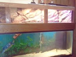 96 best turtle tank basking area images on pinterest