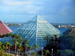 Discover the Exciting New Aquarium Pyramid at Moody Gardens