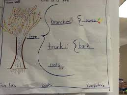 Parts Of A Tree Brace Map Template Word Definition Biology Contraction