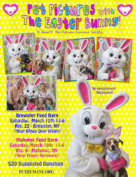 Upcoming Events | PET PICTURES WITH THE EASTER BUNNY At The ... 366063 Eijffinger By Brewster Geonature Palila Light Blue 220 Best Country Stores Images On Pinterest Stores Upcoming Events Pet Pictures With The Easter Bunny At The Ap Show Stables Horse Boarding Traing And Lessons Hunter Feed Barn Damaged In Mahopac Village Center Fire 491 Stgeraldine 39900 Sale Pending Juedeman Co Pet Pictures With Santa At The Home Fashions Window Decor Peel And Stick Cross Store Stock Photos Images Brewster Academy Issuu