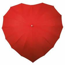 Shed Rain Umbrella Nordstrom by 87 Best Lovely Parasol Umbrella Images On Pinterest Umbrellas