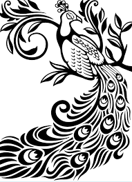 Amazon Darice Embossing Folder 425 By 575 Inch Peacock