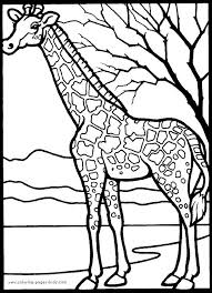 African Coloring Pages Africa Vectories