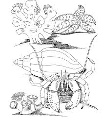 New Underwater Coloring Pages 18 In Seasonal Colouring With