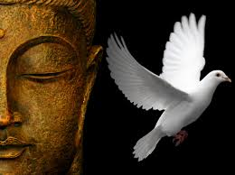Zen Pictures Buddhism Wallpapers