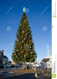 The Kinnevik Christmas Tree In Stockholm Sweden One Of Te Biggest Trees World Photo Is Taken On December 15 2016