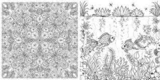 Coloring Book For Adults Secret Garden Buynet