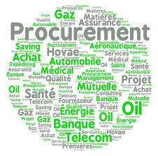 hovae cabinet de conseil en management procurement by hovae