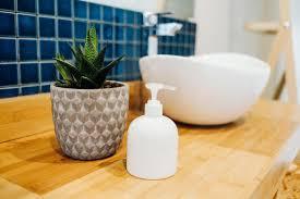 pflanzen fürs bad welche eignen sich perfekt brigitte de