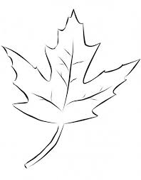 Autumn Maple Leaf Coloring Page To Color For Children