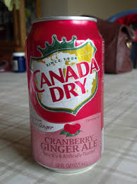 Saranac Pumpkin Ale Calories by Thirsty Dudes Canada Dry Cranberry Ginger Ale