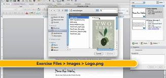 How to Use the Scrapbook feature in Microsoft fice for Mac 2011