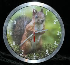 wanduhr funkuhr eichhörnchen uhr bahnhofsuhr funkuhrwerk 25cm metallrahmen