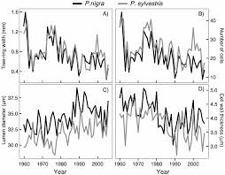 Define Carbon Sink Geography by Forests Free Full Text Effects Of Drought On Xylem Anatomy And