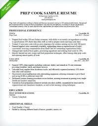 Sample Resume Professional Synopsis Example Summary Elegant Projects Software Synopsi