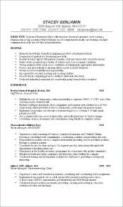 School Nurse Resume Examples Sample Resumes Templates Template Free Download