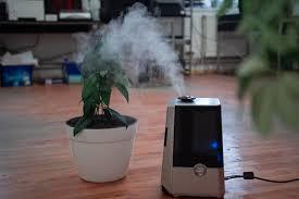 mindestfeuchte 40 prozent gesunde luftfeuchtigkeit