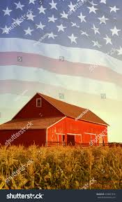 American Flag Red Barn Corn Field Stock Photo 279497378 - Shutterstock Red Barn In Arkansas Red Hot Passion Pinterest Barns New Mexico Medical Cannabis Sales Up 56 Percent Patients 74 Barnhouse Country Stock Photo 50800921 Shutterstock Rowleys Barn Home Of Spoon Interactive Childrens Dicated On Opening Day Latest Img_20170302_162810 Growers Redbarn Wet Cat Food Two Go Tiki Touring Black Market The Original Choppers By Redbarn 100 Natural Baked Beef Chews For Dogs Meet The Team Checking Out Santaquin Utah Bully Stick