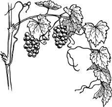 300x288 autumn leaves clipart black white Public domain vectors