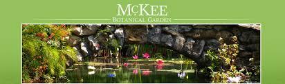 McKee Botanical Garden Vero Vine
