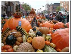 Pumpkin Festival Cleveland Ohio by Circleville Pumpkin Show Ohio Pinterest Ohio And Amazing Places