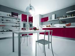 Kitchen Theme Ideas Blue by Elegant Modern Pink Kitchen Design Silver Modern Kitchen With