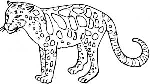 Coloring Pages Wild Animal Printable