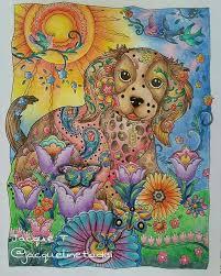 Coloured Pencils Adult Coloring Books Dog Cat Colour Book Owls Hobbies Doodles Walls