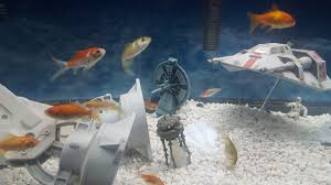 Star Wars Fish Tank Decorations by My Star Wars Fish Tank Album On Imgur