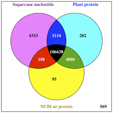 Uncovering Fulllength Transcript Isoforms Of Sugarcane Cultivar