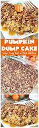 Libby Canned Pumpkin For Dogs by Pumpkin Dessert Can U0027t Stay Out Of The Kitchen
