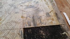 Gallery Of Asbestos Floor Tile Removal Remodel Interior Planning House Ideas Fancy In Design