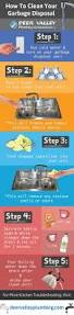 Garbage Disposal Backing Up Into Single Sink by Best 20 Clean Garbage Disposal Ideas On Pinterest Diy Drain