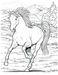 Spirit Horse Coloring Pages Ideas Horses For Wild In Page